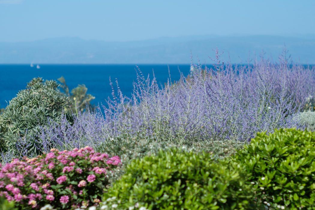 Υπέροχοι κήποι